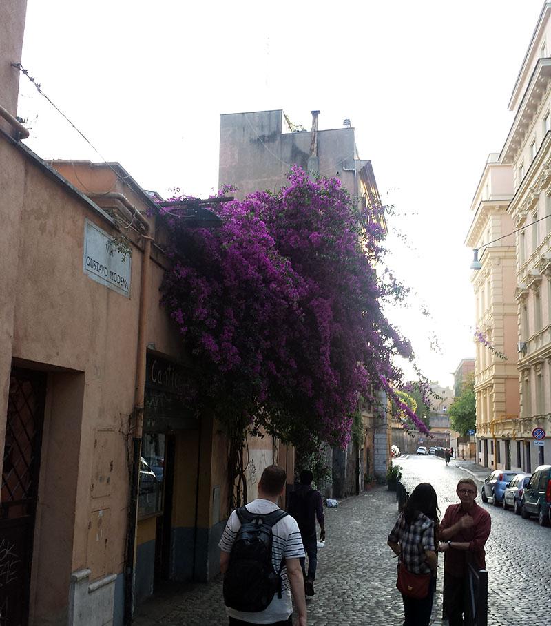 Italia-03